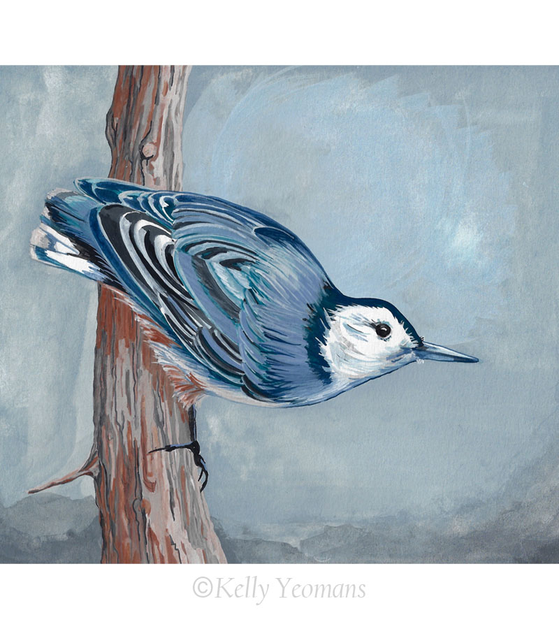Bird Painting Illustration